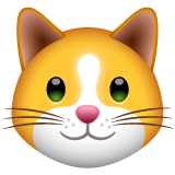 How Cat Face emoji looks on Whatsapp.